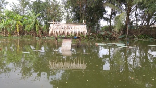 turtle/duck house with food from the villagers