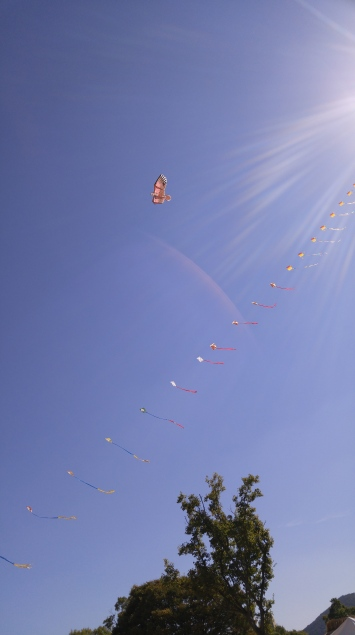 It was a nice windy day to fly a kite