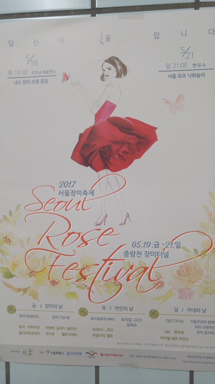Jungnang Rose Tunnel-Seoul Rose Festival 서울 장미축제