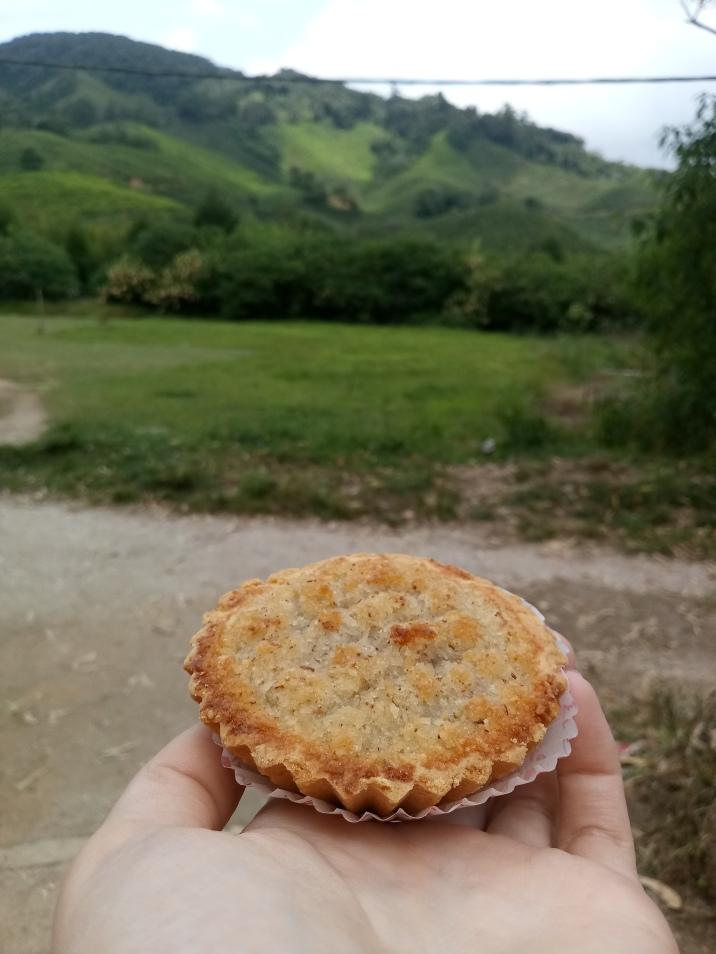 coconut tart on the path through the tea fields