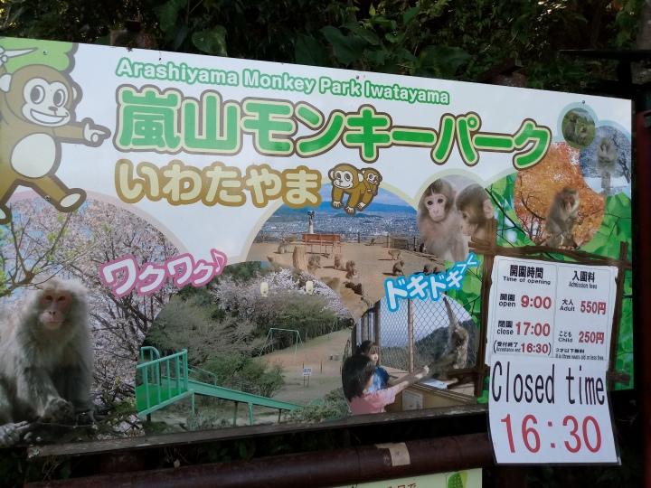 Iwatayama Monkey Park嵐山モンキーパーク