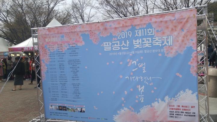 팔공산 벚꽃축제 Palgongsan cherry blossomfestival